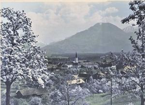 Nenzing blühende Bäume _ Frühjahr 30iger Jahre